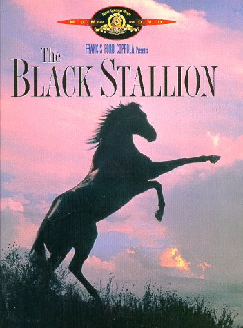 GET TICKETS:  The Black Stallion (Family Film Series)