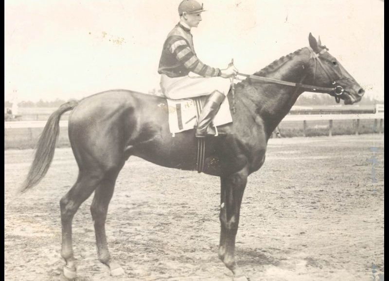 GET TICKETS: The Lockhouse Museum's Shank Lecture Series presents: Early Horse Racing in Maryland